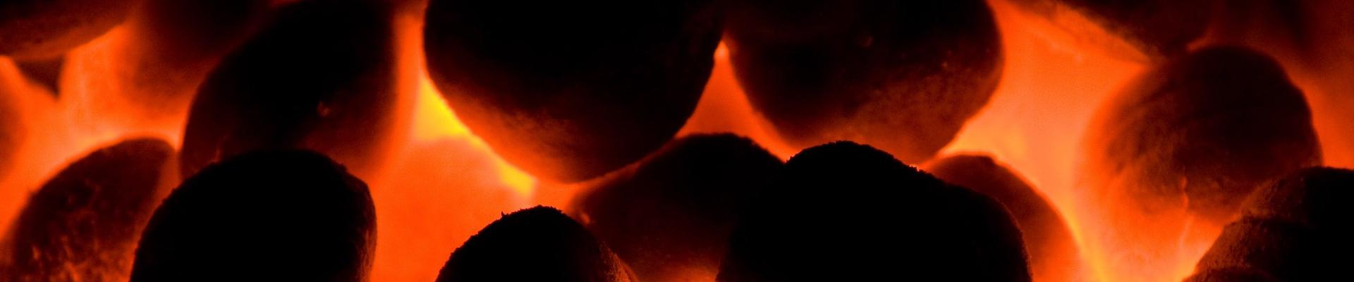 Coal, Wood and Alternative Fuels